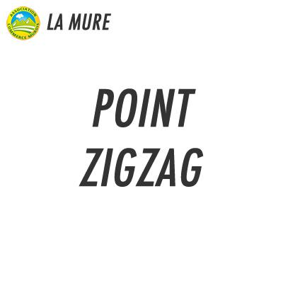 Point Zigzag