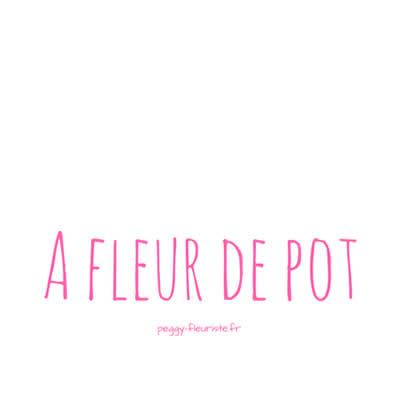 A Fleur De Pot